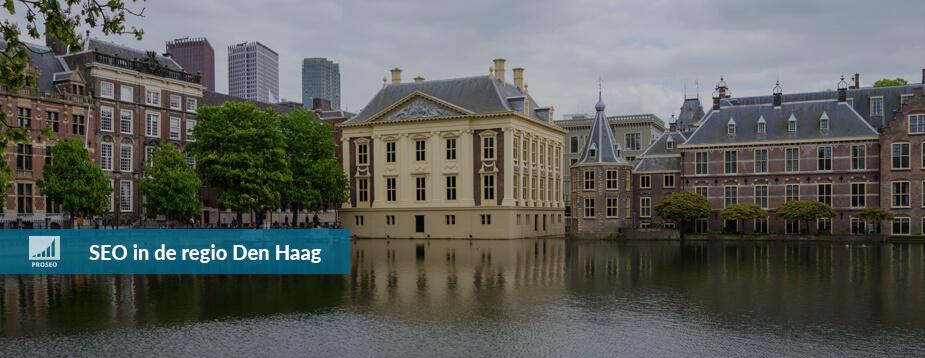 SEO Den Haag Proseo