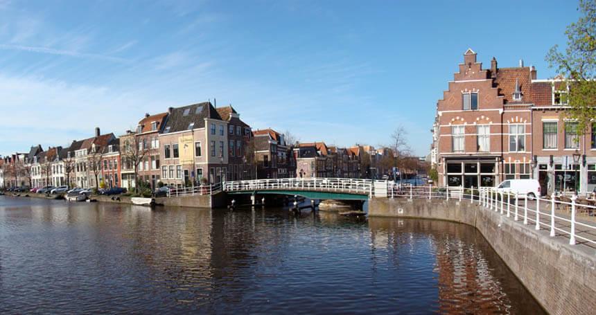 SEO Leiden Proseo